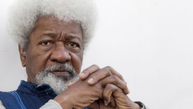 Photo of Ruga: Cattle Cannot Take Priority Over Human Beings – Soyinka