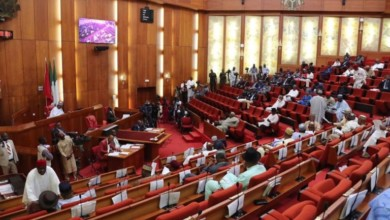 Photo of Senate Passes Bill To Establish Agric Varsity Funtua, Katsina State