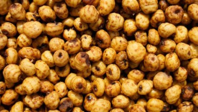 Photo of Tigernuts protect against diabetes, stroke, infertility in men, researchers find