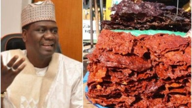 Photo of RMRDC boss list 'Kilishi production' as research breakthrough