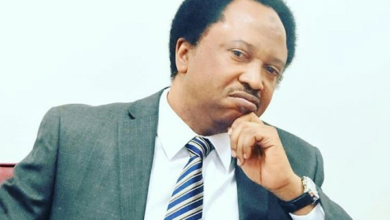 Photo of Gana: Shehu Sani condemns killing of surrendered Benue most wanted criminal